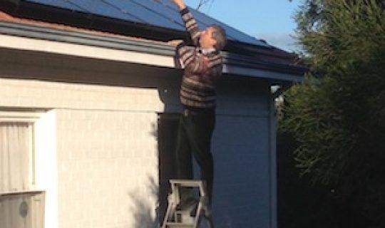 Understorey- Solar Revolution