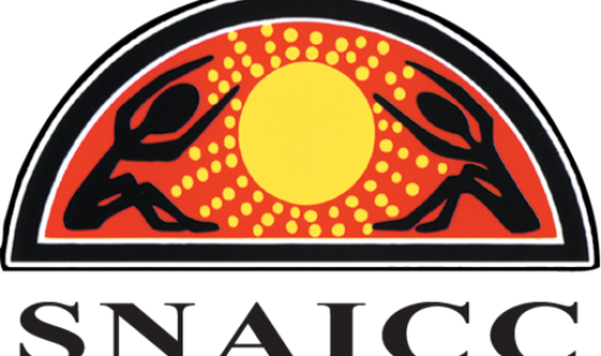 Indigenous Child Rights Concerns