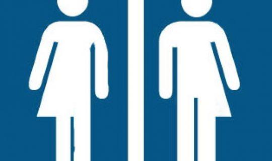 Talk the Talk: Genderless Pronouns