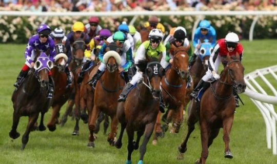 Melbourne Cup Goes Too Far