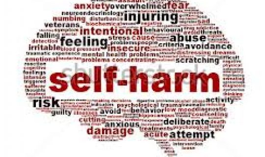 Deliberate Self-Harm