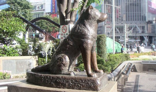 Hachiko Day