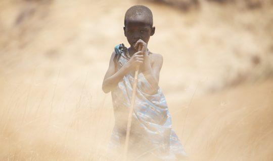 Spirit of the Maasia