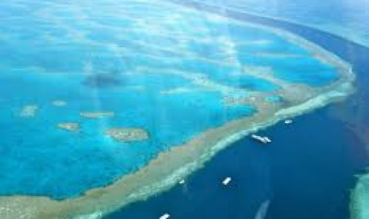 Great Barrier Reef: Street View