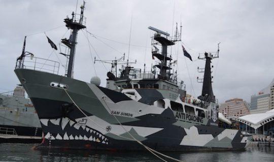 Sea Shepherding