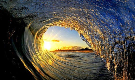Understorey: New Power Underwater