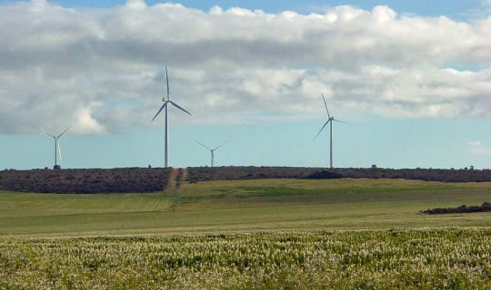 Wind in the Turbine Debate