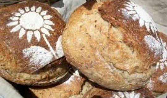 The Food Alternative #52: Life of an Artisan Baker