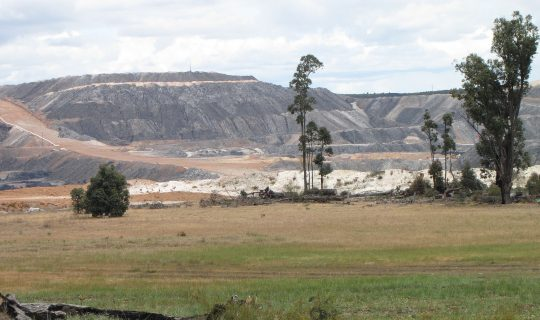 Understorey: Burning Futures, Collie Coal and Climate Action