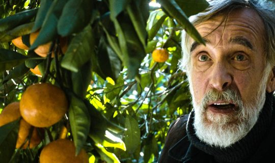 Lotterywest Festival Films: Tangerines
