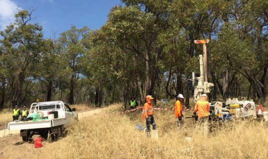 Main Roads Under Fire for Destruction of Ancient Jarrah Tree