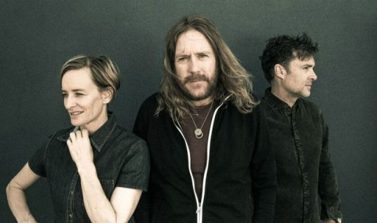 25 Years of Spiderbait
