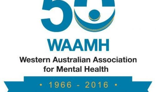 WAAMH Conference: Recovery Stories