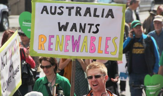 Understorey: All Into Renewables