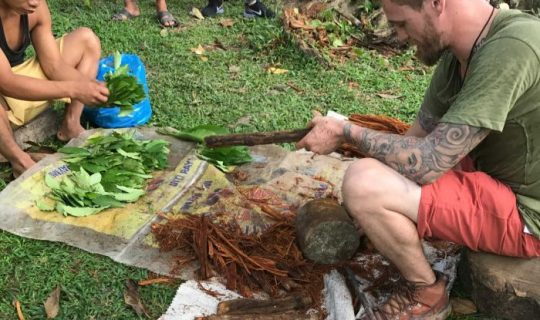 The Rise and Fall of Ayahuasca
