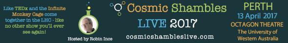 Cosmic Shambles