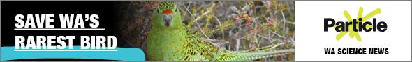 MK1413 - RTR FM web banners - bird landscape