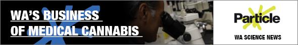 MK1413 - RTR FM web banners - cannabis landscape