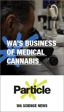 MK1413 - RTR FM web banners - cannabis portrait