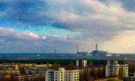 Understorey: Chernobyl's Secrets