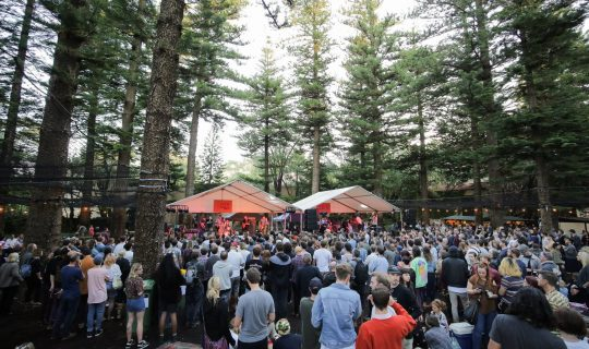 In The Pines 2017 – Re-Stream