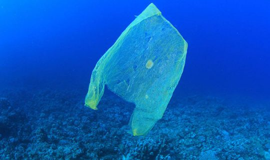 Ban the Bag: Government plans to restrict Plastic Bag use in Australia