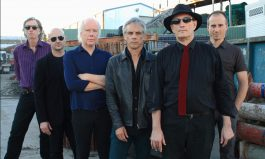 Charting Radio Birdman's Ascent