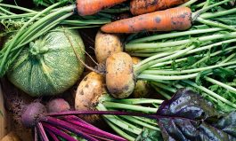 DIG! A bunch of SOUPer winter veggies