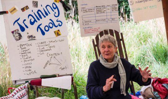 Understorey: Shepherds and Sustainability