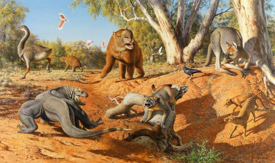 Killer Kangaroos and a Giant Platypus