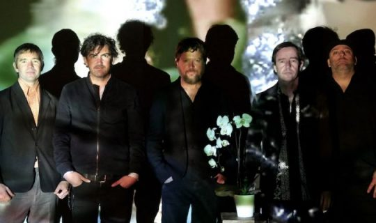 Augie March Talk New Record Bootikins