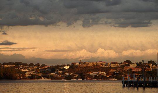 Understorey: Climate 2018 ~Wetlands Heartache & Hope