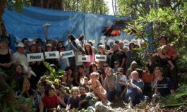 WA Forest Alliance Call On The Community For Help