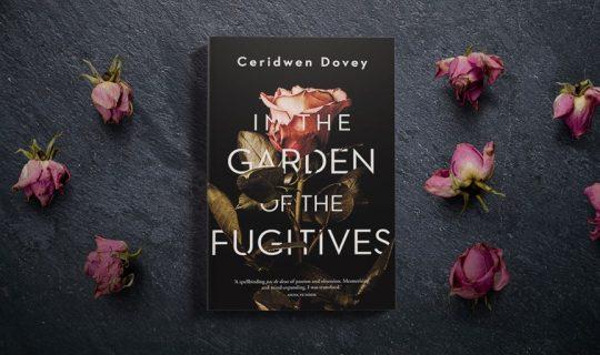 Ceridwen Dovey Releases New Novel