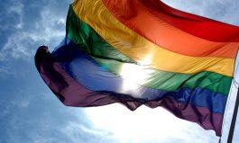 LGBTI Health Consultations