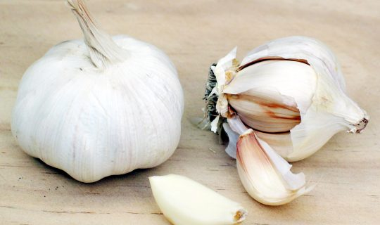Garlic Research