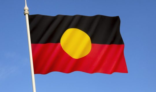 Stolen Gen Survivors experiencing intergenerational trauma – Recent Report Reveals
