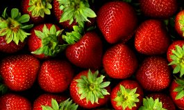Strawberry Crisis and China Trade
