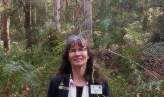 Understorey: Poison Papers Neighbours