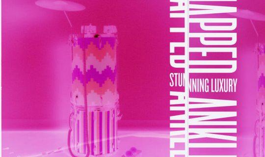 RTRFM Feature Album: Snapped Ankles