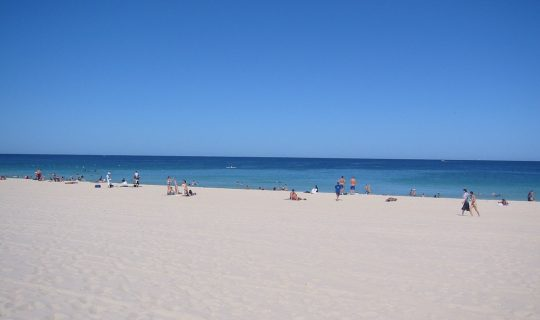 Scarborough Beach To Stay Beached