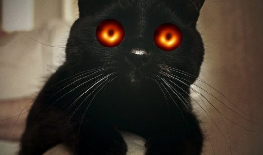 Introducing Black Hole Cat Science with Commander Kat!