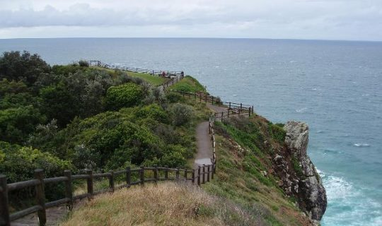 Wildboy's Adventure to Cape Byron