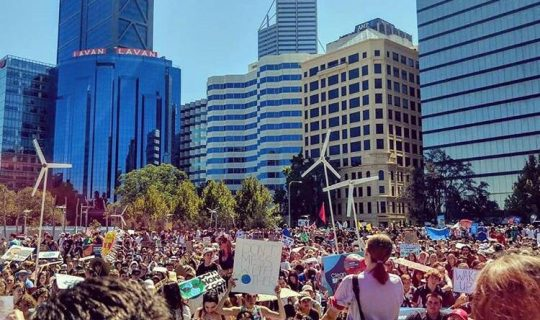 Conservation Council Joining the Global Climate Strike