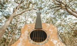 Strings Attached: WA's Guitar Festival
