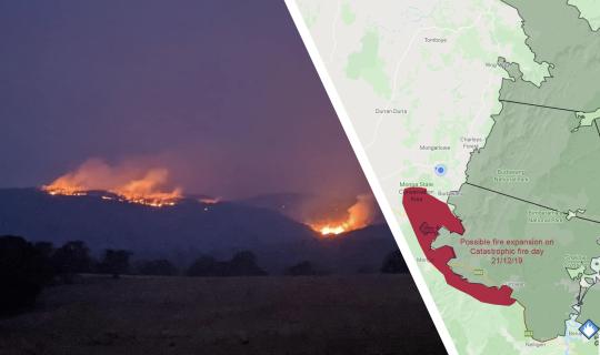 Understorey: Fighting Fires