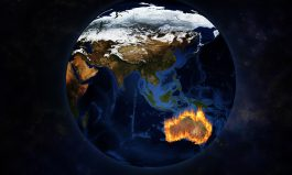 Australia failing on environmental report card