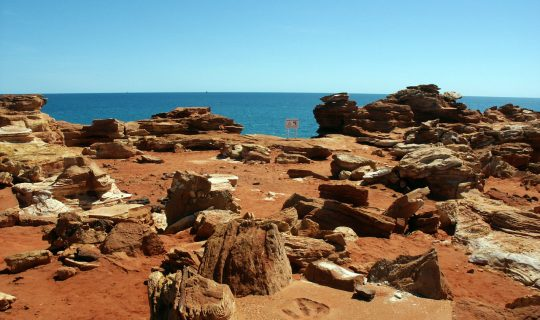 WA Dinosaur Tracks Amongst the World's Greatest